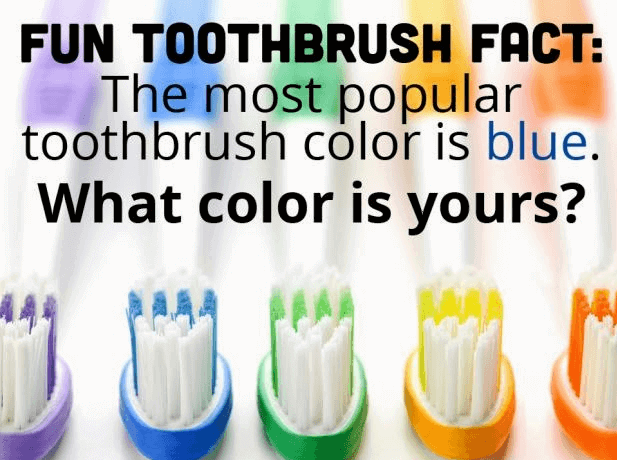 An array of colorful toothbrushes
